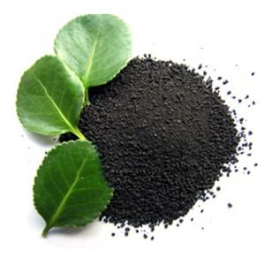 Крыжовник – это многолетнее растение, представляющее собой небольшой колючий кустарник