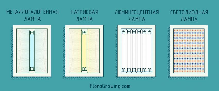 типы ламп для гидропоники