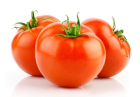 Можно ли вырастить томаты на гидропонике в домашних условиях?