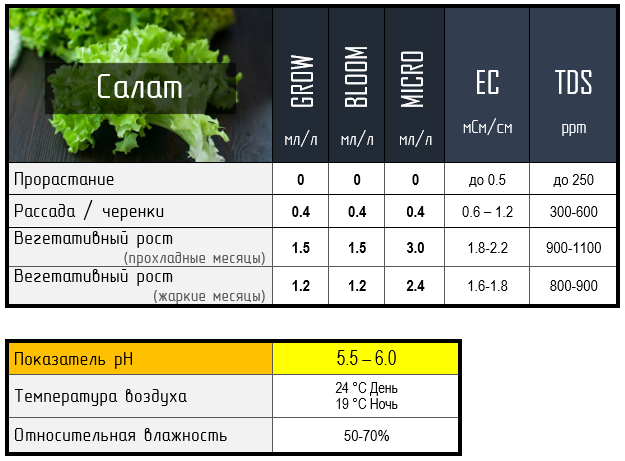 таблица для салата