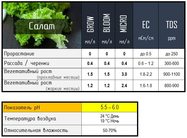 таблиці для салату